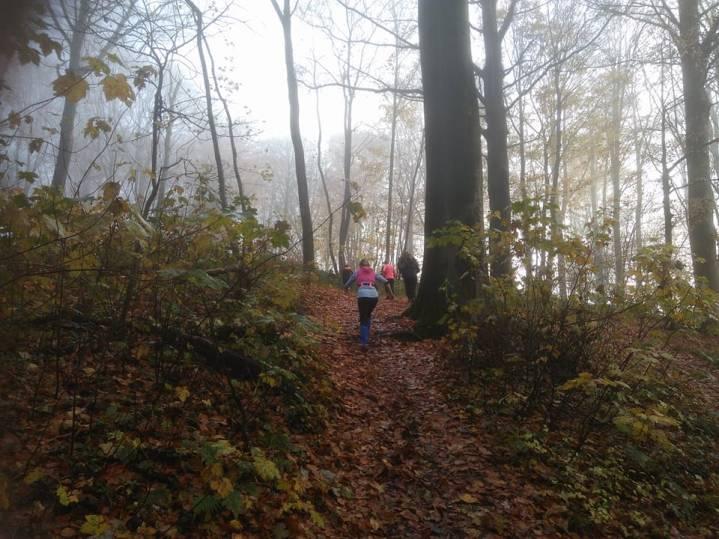 Kluisbos trailrunning